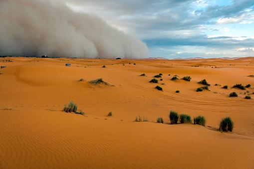Merzouga「Sandstorm Approaching Merzouga Settlement,in Erg Chebbi Desert Morocco, North Africa」:スマホ壁紙(16)