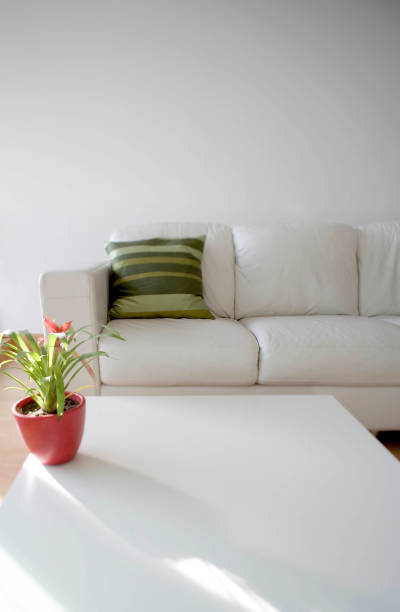 Interior side lit view of living room seating area, including coffee table, white sofa and plant.:ニュース(壁紙.com)