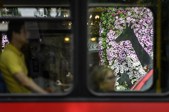 キールズ「Shops And Businesses Supporting The 2017 RHS Chelsea Flower Show」:写真・画像(2)[壁紙.com]