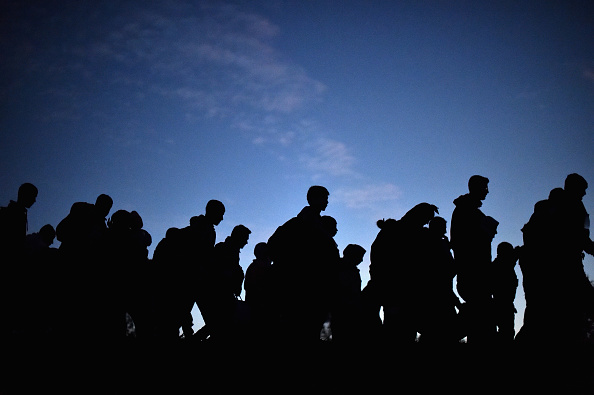 Slovenia「Migrants Cross Into Slovenia」:写真・画像(6)[壁紙.com]