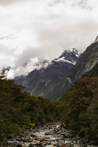 cloud「Hollyford River in the Upper Hollyford Valley.」:スマホ壁紙(12)