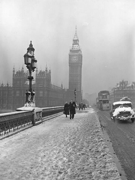 雪「London Fog」:写真・画像(6)[壁紙.com]