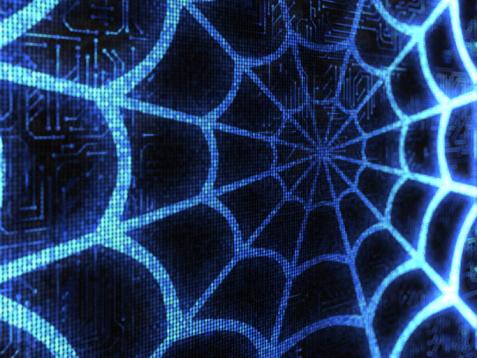 Spider Web「Web」:スマホ壁紙(15)