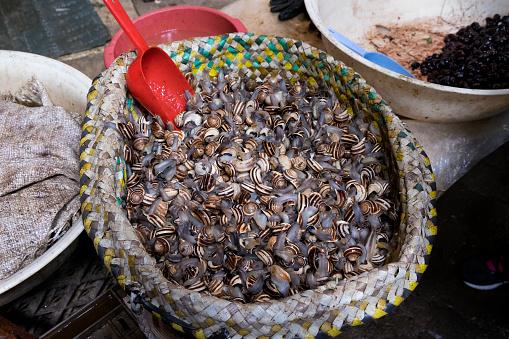カタツムリ「Fish Maket in the Souk, Fez」:スマホ壁紙(16)