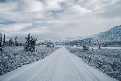 Long「Long snow covered road」:スマホ壁紙(16)