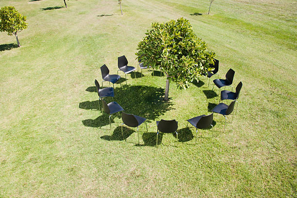 Circle of office chairs around tree in field:スマホ壁紙(壁紙.com)