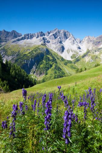 Lechtal Alps「view on the lechtaler alps, tirol, austria」:スマホ壁紙(9)