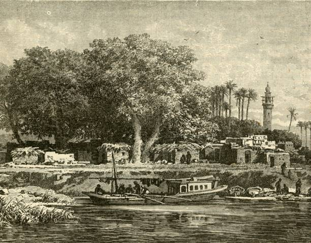 View On The Delta Of The Nile:ニュース(壁紙.com)