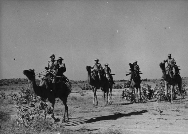 Camel Corps:ニュース(壁紙.com)