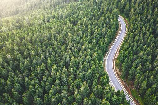 Travel「Picturesque Mountain Road」:スマホ壁紙(18)