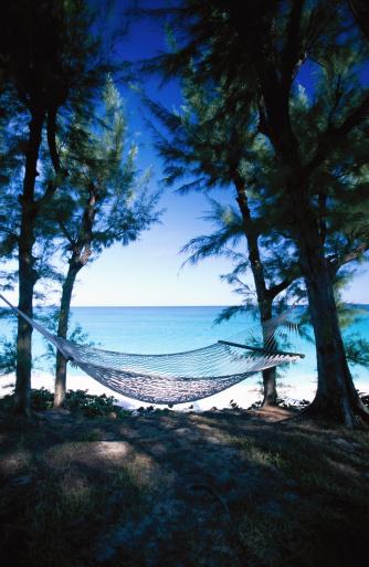 Hammock「Shady hammock on woodland seashore」:スマホ壁紙(10)