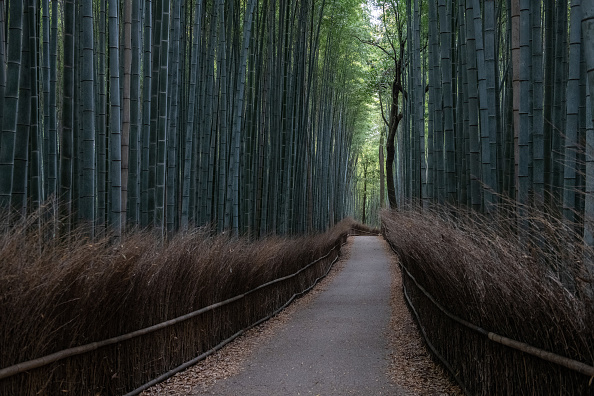 Footpath「Japan's Tourism Sector Hit By Coronavirus Outbreak」:写真・画像(2)[壁紙.com]