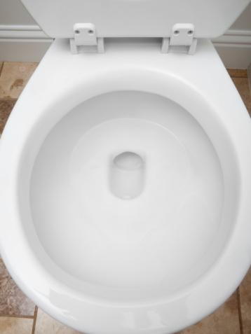 スイセン「Toilet bowl」:スマホ壁紙(4)