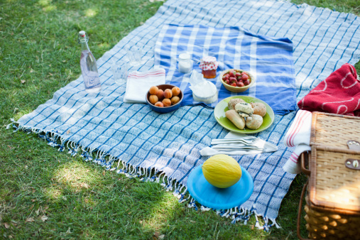 Picnic Blanket「Food on blanket in grass」:スマホ壁紙(1)