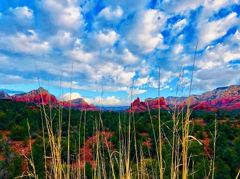 Sedona「Sedona Arizona.  Red Rock landscape」:スマホ壁紙(18)