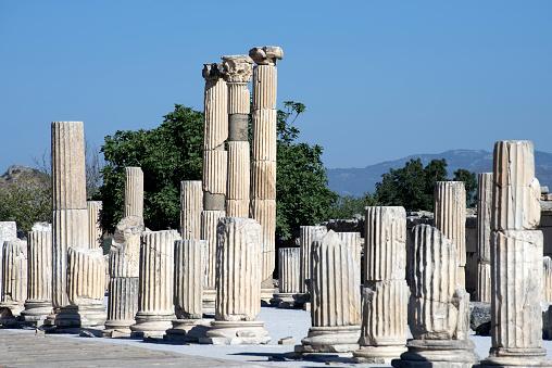 Izmir「Agora columns, Ephesus antique city, Izmir Turkey」:スマホ壁紙(14)