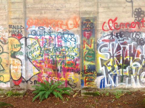 Teenager「Graffiti on concrete walls」:スマホ壁紙(19)