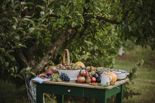 秋「Autumn Fruit and vegetable arrangement on a garden table, Serbia」:スマホ壁紙(3)