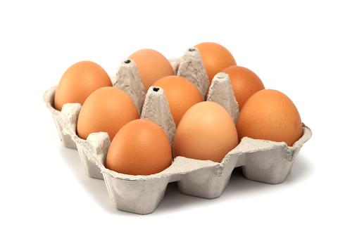 Animal Egg「Nine eggs」:スマホ壁紙(17)