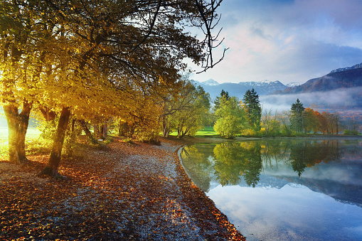 European Alps「Sunrise at Lake Bohinj, Triglav National Park, Slovenia」:スマホ壁紙(4)