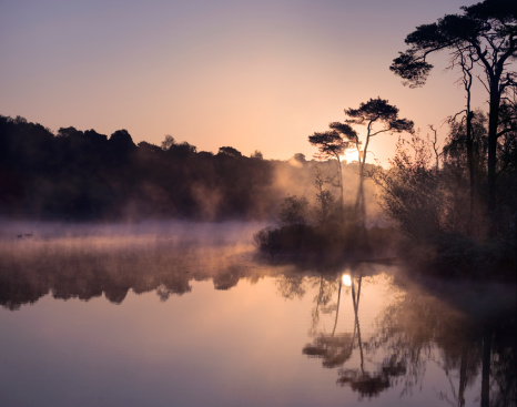 North Brabant「Sunrise at a lake in the south of the Netherlands」:スマホ壁紙(9)