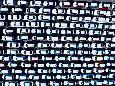Car Dealership「A line of cars.」:スマホ壁紙(7)