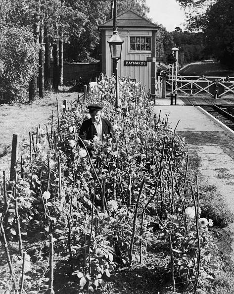 静かな情景「Station Garden」:写真・画像(19)[壁紙.com]
