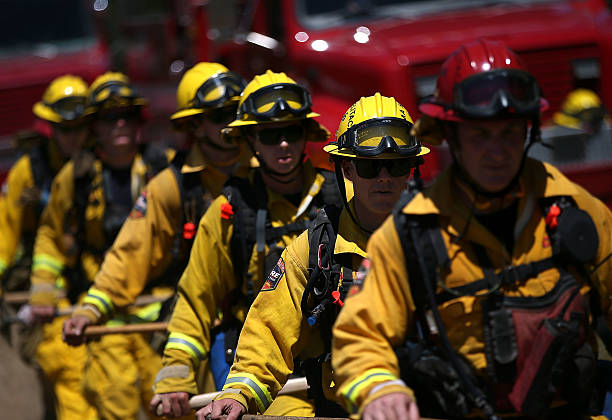 California Firefighters Undergo Training For Controlled Burns During Wildfires:ニュース(壁紙.com)