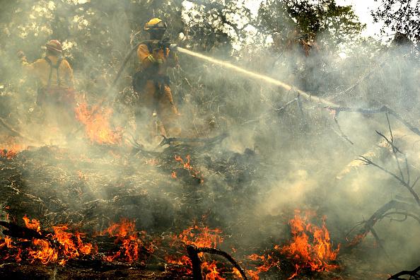 Mop「Massive Wildfire Spreads To 80,000 Acres, Scorches Homes Near Redding, CA」:写真・画像(8)[壁紙.com]