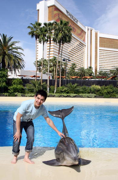 Aquatic Mammal「American Idol Contestants Visit LOVE」:写真・画像(6)[壁紙.com]