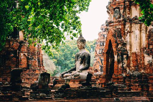 Surrounding「Thailand, Ayutthaya, Buddha statue surrounded by brick pagodes at Wat Mahathat」:スマホ壁紙(16)