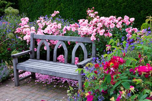 Bench「Blossoming flowers」:スマホ壁紙(12)