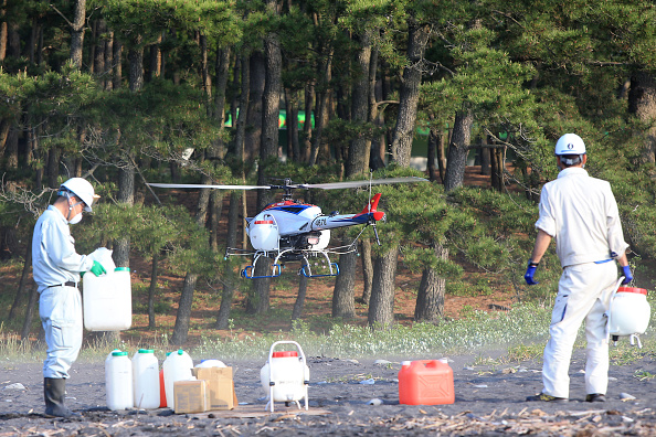静岡県「YAMAHA's Unmanned Helicopter Sprays Pesticides In Scenic Miho Pine Grove」:写真・画像(8)[壁紙.com]