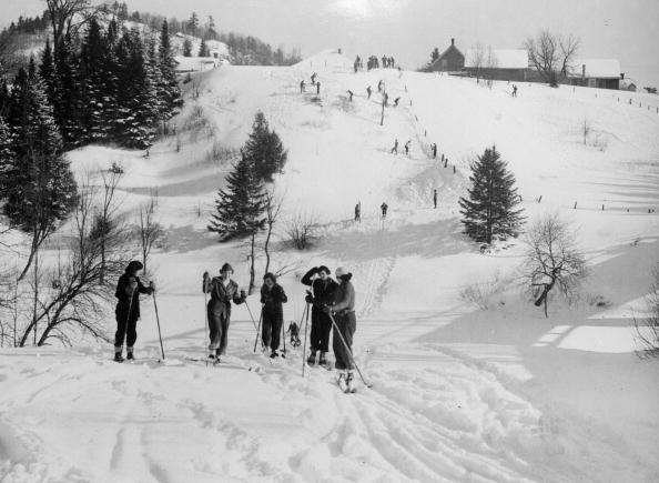 Ashwood「Canadian Skiers」:写真・画像(15)[壁紙.com]