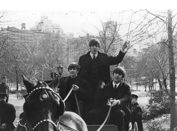 Horse「Beatles In The Park」:写真・画像(12)[壁紙.com]