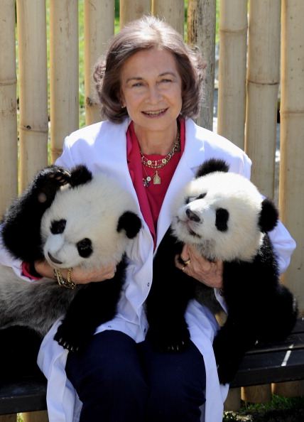 Queen Sofia of Spain「Queen Sofia of Spain Visit Panda Bears At The Madrid Zoo」:写真・画像(16)[壁紙.com]