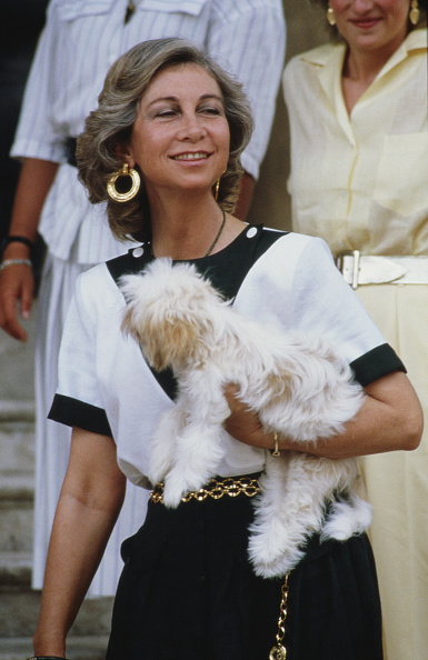 Queen Sofia of Spain「Spanish Queen」:写真・画像(1)[壁紙.com]