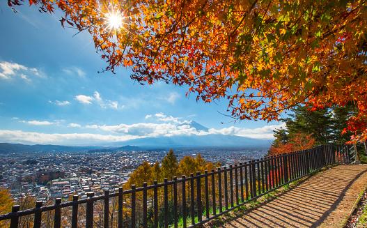 Mt Fuji「Mt. Fuji in autumn」:スマホ壁紙(17)