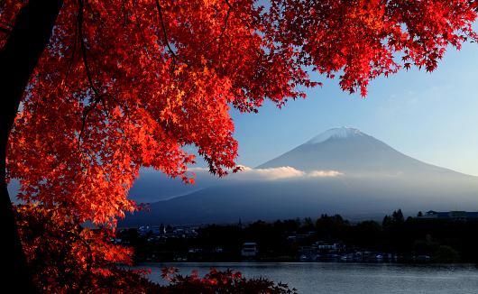 Mt Fuji「Mt. Fuji in autumn」:スマホ壁紙(6)