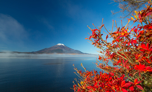 Mt Fuji「Mt. Fuji in autumn」:スマホ壁紙(19)