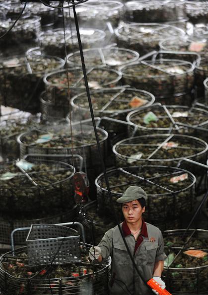 Dumpling「Chinese Prepare For Dragon Boat Festival」:写真・画像(13)[壁紙.com]