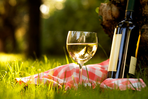 Picnic「Glass of white wine with bottle」:スマホ壁紙(6)