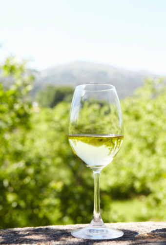 Agricultural Field「Glass of white wine at vineyard」:スマホ壁紙(1)