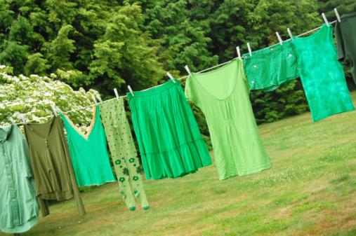 Hosiery「Green laundry」:スマホ壁紙(16)