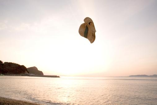 Straw Hat「Straw Hat in the air」:スマホ壁紙(5)