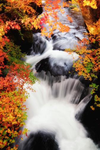 Tochigi Prefecture「Autumn Waterfall in evening sunlight」:スマホ壁紙(18)