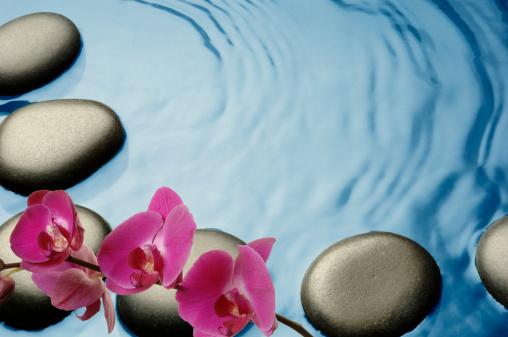 Feng Shui「Tropical Spa」:スマホ壁紙(8)