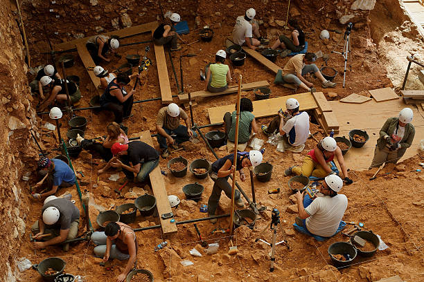 Works at Atapuerca Archeological Site:ニュース(壁紙.com)