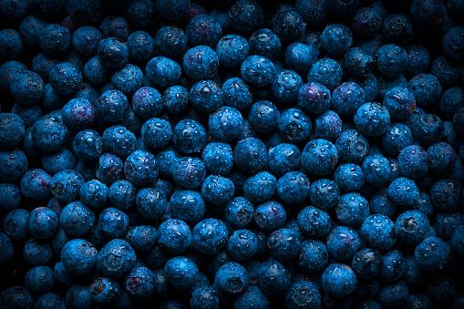 Wet「Pile of fresh wet blueberries」:スマホ壁紙(18)
