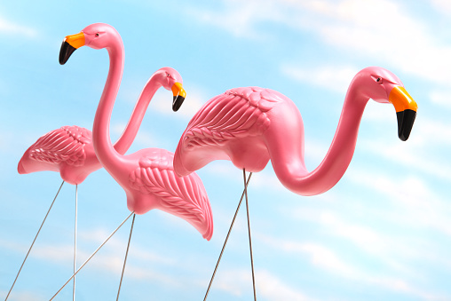 Kitsch「Three pink plastic lawn flamingos against blue sky background」:スマホ壁紙(15)